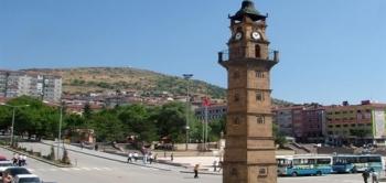 Yozgat Varis Tedavisi